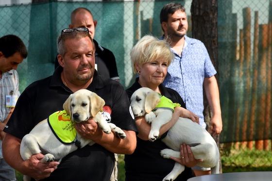 Vězni v Jiřicích dostali štěňata, budou z nich vychovávat vodící psy